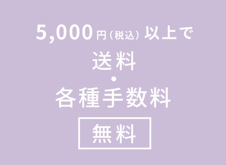 5,000円(税込)以上で送料・各種手数料 無料